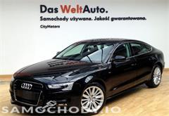audi z miasta gdańsk Audi A5 A5  2.0 tdi  sportback S Line CityMotors