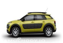 citroen z województwa podkarpackie Citroën C4 Cactus 1.2 110 More Life. Kredyt 0 % bez oprocentowania i prowizji !!!