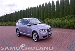 audi Audi A3 8P (2003-2012) 1.6 MPI 2008r. Zadbana Klimatro. Alufel. Po Opłatach
