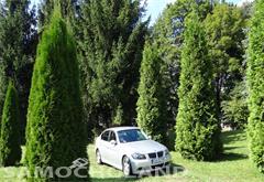 BMW Seria 3 E90 (2005-2012) 2005 BMW e90 325i 6 biegow