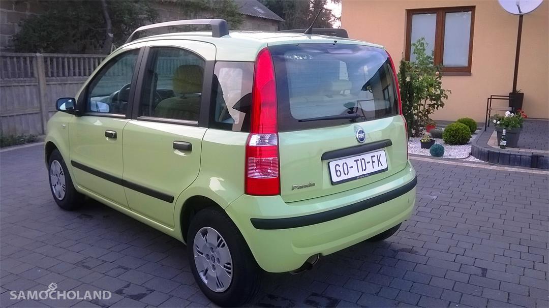 Fiat Panda II (2003-2012) Fiat Panda 1.2 Benzyna Oryginał SUPER STAN !! 4