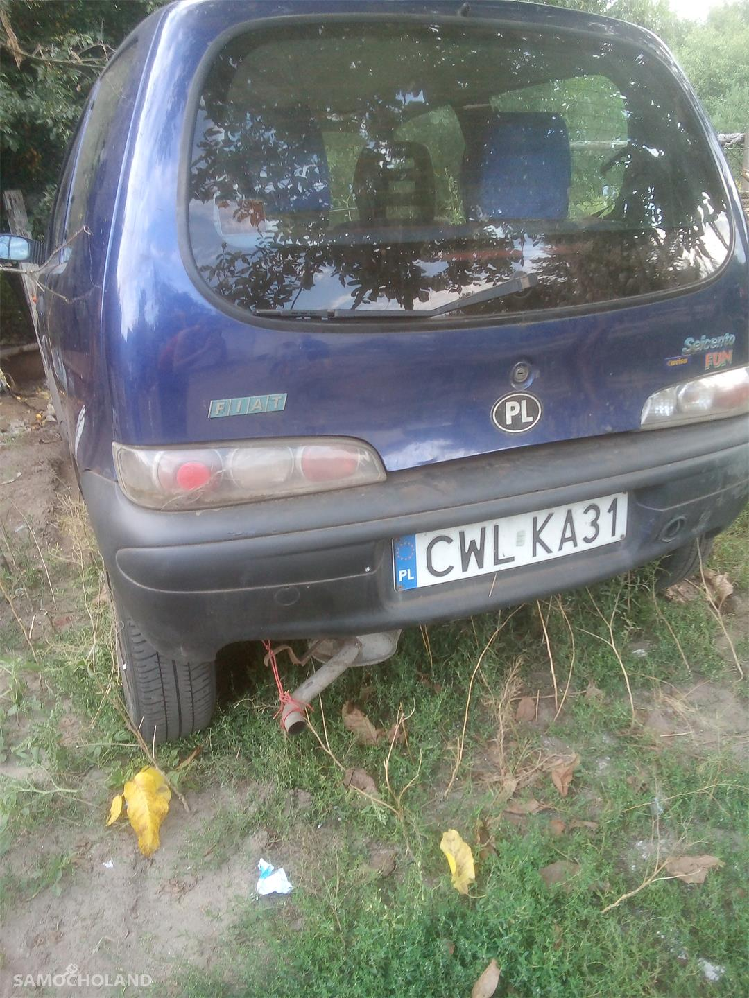 Fiat Seicento Fiat Seicento YOUNG 899 4