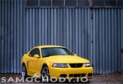 ford z województwa śląskie Ford Mustang SVT Cobra 818KM