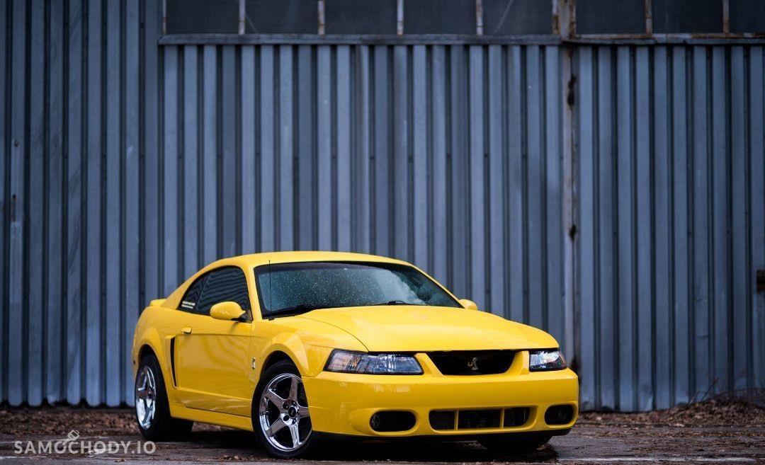 Ford Mustang SVT Cobra 818KM 1
