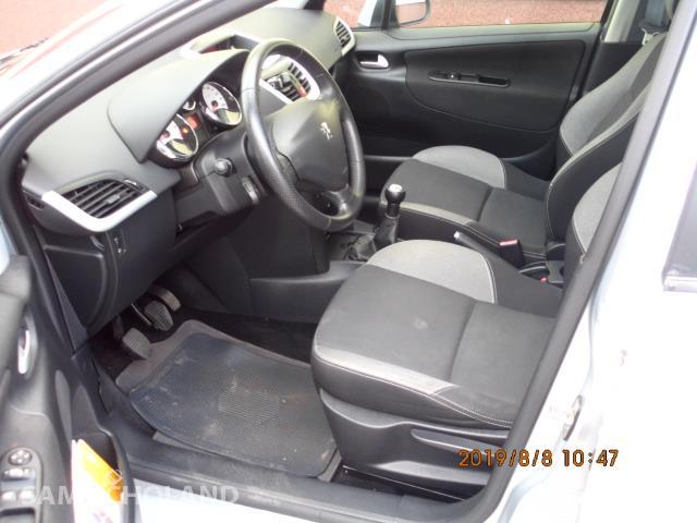Peugeot 207  29