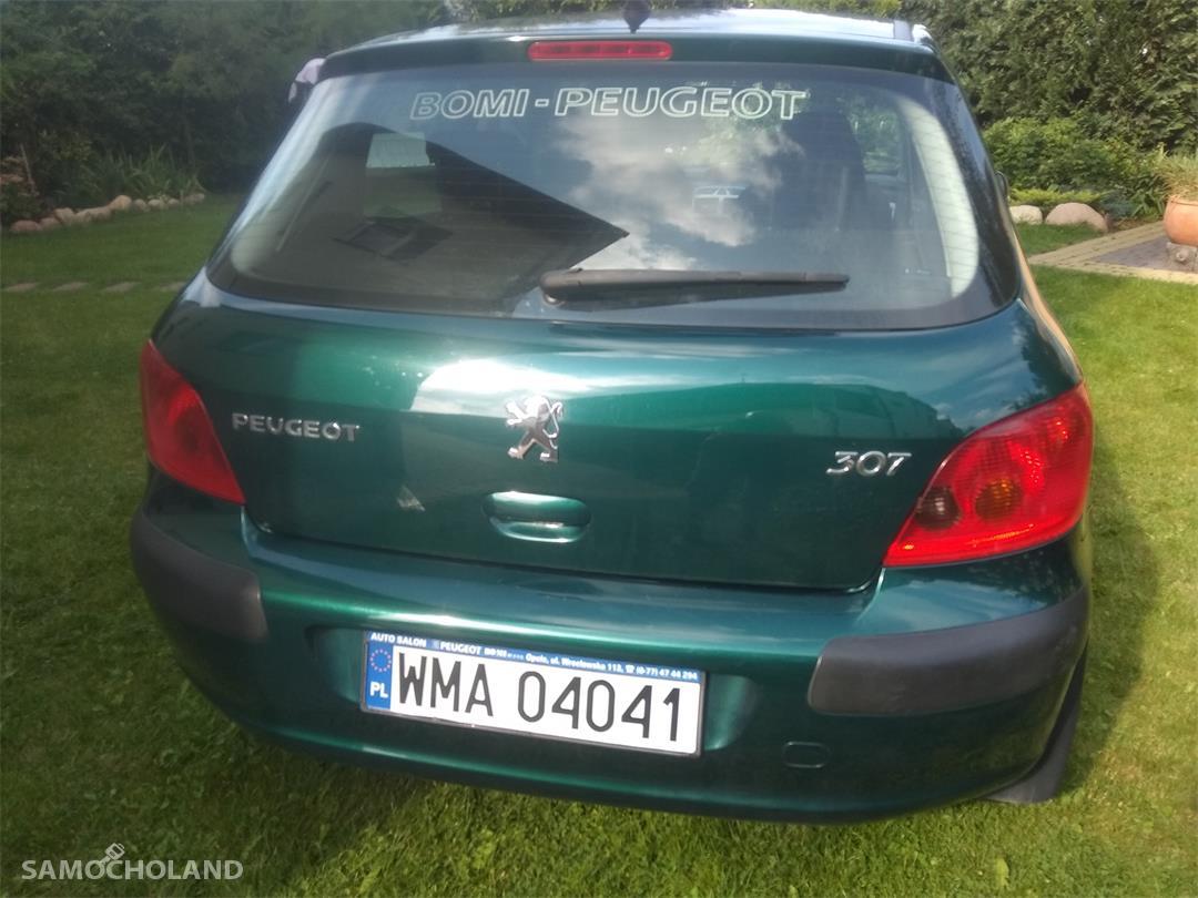 Peugeot 307 I (2001-2005) Sprzedam samochód 16