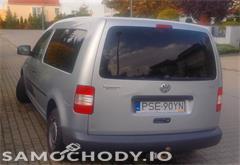 volkswagen z województwa wielkopolskie Volkswagen Caddy III (2004-) Diesel 1.9 105KM 2006r.