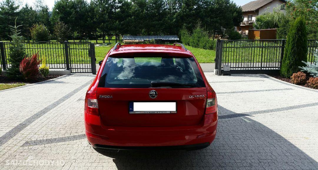 Škoda Octavia Pierwszy właściciel, zakupiony w polskim salonie, bezwypadkowy 1.6 TDI 7