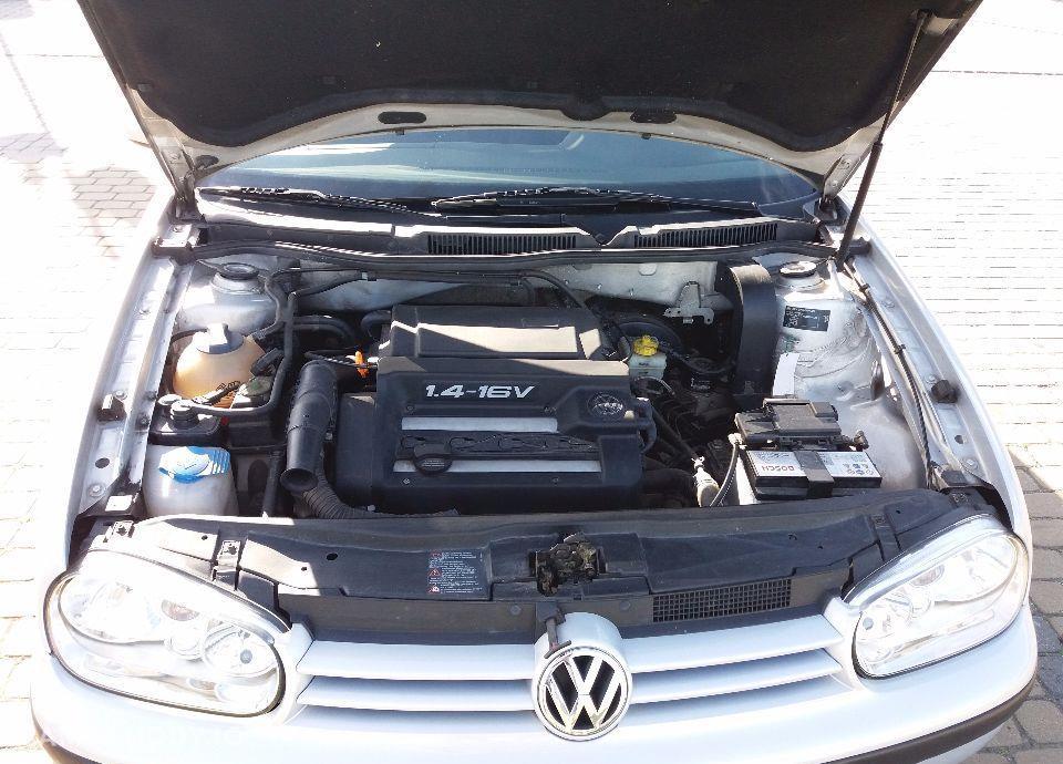 Volkswagen Golf 79
